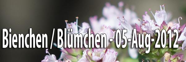 Bienchen und Bluemchen 05 Aug 2012 Artikelbild