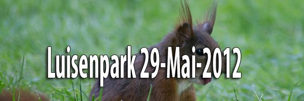 Luisenpark 29 Mai 2012 Artikelbild