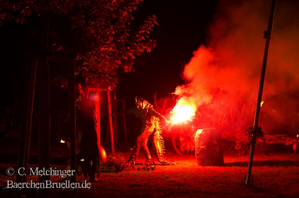 MPS Speyer 2015 Feuershow