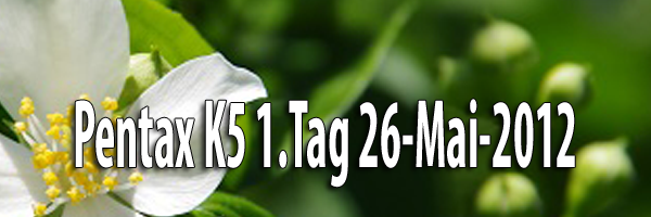 Pentax K5 1Tag 26-Mai-2012