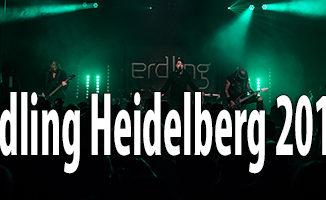 Fotos Erdling halle02 Heidelberg 2017