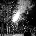 MPS Speyer 2015 Feuershow